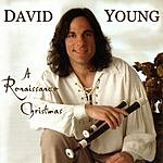 David Young A Renaissance Christmas
