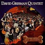David Grisman Dawgnation