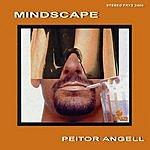 Peitor Angell Mindscape, Vol.1