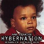 Mr. D-Note Hybernation