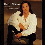 David Young Beyond...Celestial Winds