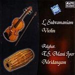 L. Subramaniam Mridangam