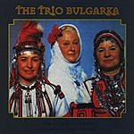 The Trio Bulgaria The Forest Is Crying (Lament For Indje Voivode)