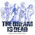 The Dream Is Dead Taking Friendly Fire