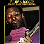 Magic Sam Black Magic