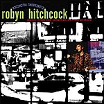 Robyn Hitchcock Storefront Hitchcock: Music From The Jonathan Demme Picture