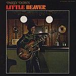 Little Beaver Party Down