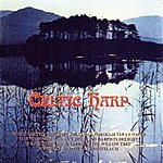 The World Players The World Of Celtic Harp
