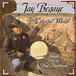 Jay Begaye The Colorful World