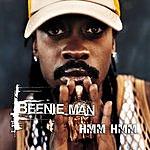Beenie Man Hmm Hmm (Radio Edit)