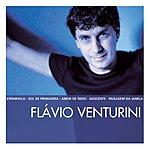 Flavio Venturini The Essential