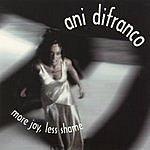 Ani DiFranco More Joy, Less Shame