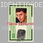 Flavio Venturini Identidade