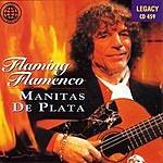 Manitas De Plata Flaming Flamenco