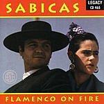 Sabicas Flamenco On Fire
