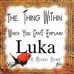 Luka Van Den Driesschen The Thing Within Which You Can't Explain