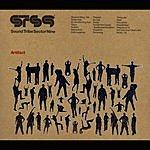 STS9 Artifact