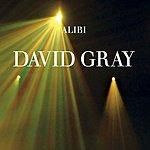 David Gray Alibi