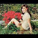 Feist Mushaboom (Single)