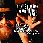 Hank Williams, Jr. That's How They Do It In Dixie (Single)
