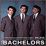 The Bachelors I Believe