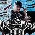 Bubba Sparxxx The Charm (Parental Advisory)