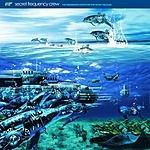 Secret Frequency Crew The Underwater Adventure Hop Secret Treasure