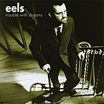 Eels Trouble With Dreams/After The Operation