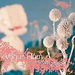 Venus Hum Yes And No (EP)