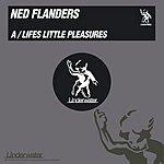 Ned Flanders Lifes Little Pleasures/Mr Sonic