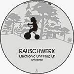 Rauschwerk Electronic Unit Plug