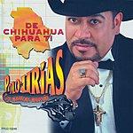 Polo Urias De Chihuahua Para Ti