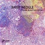 Barry Wedgle The Antidote