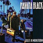 Havana Black Exiles In Mainstream