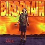 Birdbrain Bliss