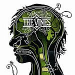 The Vines Anysound/Gross Out (Demo)