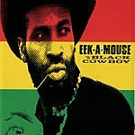 Eek-A-Mouse Black Cowboy