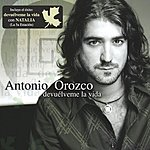 Antonio Orozco Devuelveme La Vida (Mexican Version)