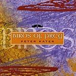 Peter Kater Birds Of Prey