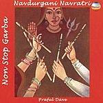 Praful Dave Navdurgani Navratri