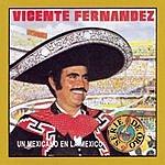 Vicente Fernández Un Mexicano En La Mexico