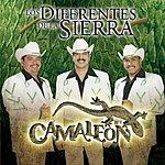 Los Diferentes De La Sierra Camaleón