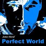 James David Perfect World