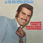 Vicente Fernández La Voz Que Usted Esperaba