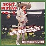 Vicente Fernández Sony-Pistas, Vol.5