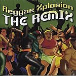 Jazzy T Reggae Xplosion: The Remix