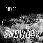 Doves Snowden