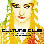 Culture Club Do You Really Want To Hurt Me (DJ Lbr Remix)