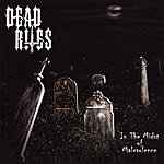 Dead Rites In The Midst Of Malevolence