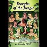 Exus Energies Of The Jungle